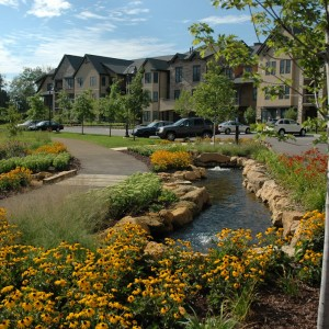 Senior Housing Landscape Design